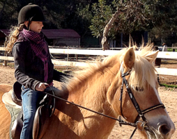 Riding horses with Healthy Ibiza